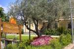 TurismoInCilento.it - B&B,Casevacanze,Hotel - That's Amore Country House - 2587 DSCN1221
