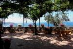 TurismoInCilento.it - B&B,Casevacanze,Hotel - RESIDENZA GOLFO DEGLI ULIVI -
