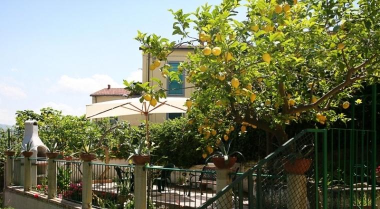 TurismoInCilento.it - B&B,Casevacanze,Hotel - Casa Vacanza Annina - 3603 CASAVACANZA ANNINA AGROPOLI GIARDINO