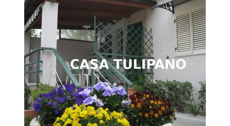 TurismoInCilento.it - B&B,Casevacanze,Hotel - Casa vacanze Mimose -