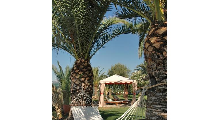 TurismoInCilento.it - B&B,Casevacanze,Hotel - Villa delle Palme - 5835 villa delle palme sapri 7 big