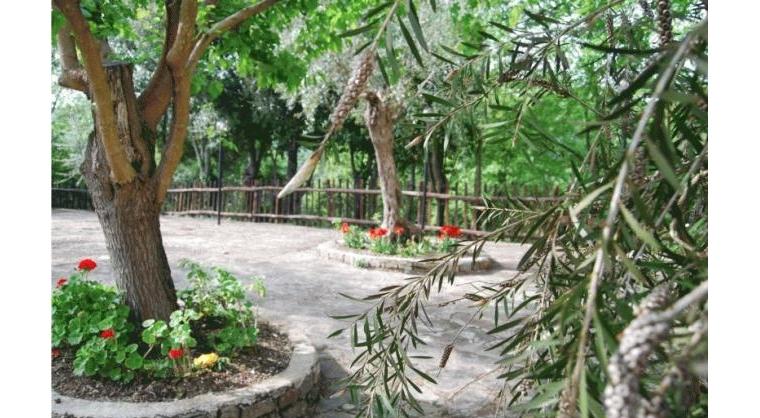 TurismoInCilento.it - B&B,Casevacanze,Hotel - B&B La Quercia - 6006 bb la quercia gioi 22