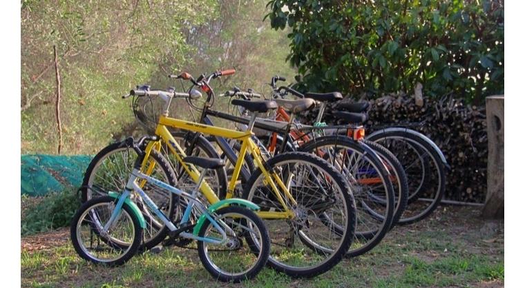TurismoInCilento.it - B&B,Casevacanze,Hotel - Le Terme di Velia - Biciclette per gli Ospiti