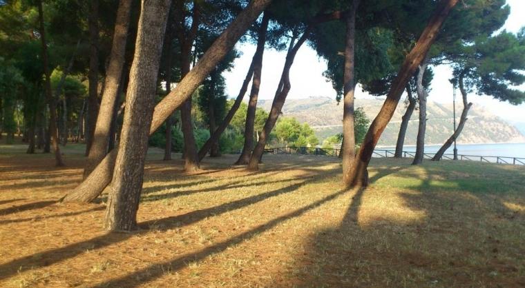 TurismoInCilento.it - B&B,Casevacanze,Hotel - CaseMontone a 50mt dal mare - pineta a 50mt da casemontone